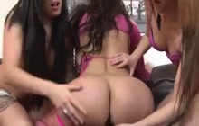 Vyxen Steele, Foxy Prissy and Amy Anderssen lesbian three-way fun